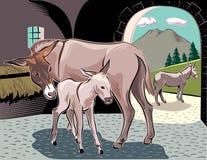 与她小的小狗的一头驴 库存图片