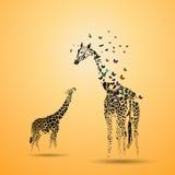 与她的婴孩的长颈鹿 库存图片