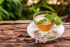 与姜切片和薄荷的叶子的姜茶杯 免版税库存照片