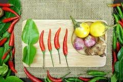 与姜非洲黑人石灰叶子的辣椒用在麻袋布背景的泰国葱 免版税库存图片