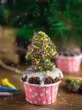 与姜饼christmastree的巧克力微型杯形蛋糕 库存图片