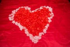 与婚礼的红色花爱 库存图片