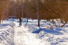 与婴儿推车的一个人剪影沿接近的3月太阳的光芒点燃的积雪的公园大道漫步 免版税库存照片