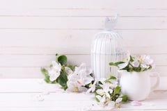 与嫩苹果开花和蜡烛的明信片在装饰鸟 免版税库存照片