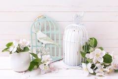 与嫩苹果开花和蜡烛的背景在装饰双 库存照片