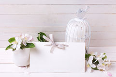 与嫩苹果开花,在装饰鸟的蜡烛的背景 库存图片