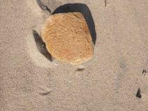 与孔的石头 库存图片