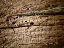 与孔的老木头和镇压关闭  免版税库存图片