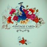与孔雀的花卉葡萄酒卡片 库存图片