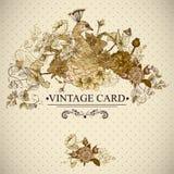 与孔雀的花卉葡萄酒卡片 库存例证