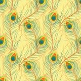 与孔雀羽毛的样式 库存照片