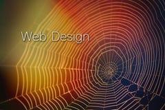 与字法印刷术的SpiderWeb网站设计五颜六色的光迷离 免版税库存照片