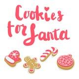 与字法的被隔绝的冬天圣诞节曲奇饼 免版税库存照片