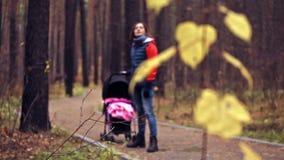 与孩子的步行在秋天森林里 影视素材