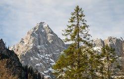 与它独特的形状的美丽的Å pik山在朱利安阿尔卑斯山 免版税库存照片