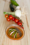 与它的成份的安达卢西亚的gazpacho 库存照片