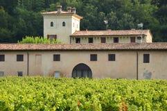 与它的葡萄园的一个古老农厂庄园在乡下  库存图片