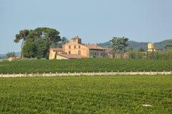 与它的葡萄园的一个古老农厂庄园在乡下  库存照片