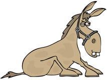 与它的被种植的蹄的倔强驴 免版税库存图片