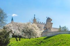 与守卫鲁布林皇家城堡狮子scrupture的小山在春天的 库存照片