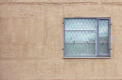 与安全卫兵的一个灰色窗口在现代大厦米黄背景一楼上涂了灰泥墙壁 图库摄影