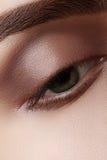 与完善的形状眼眉的特写镜头宏观美丽的女性眼睛 清洗皮肤,时尚自然发烟性构成 好视觉 库存照片