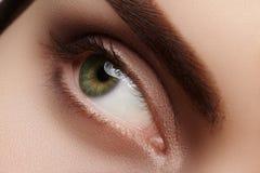 与完善的形状眼眉的特写镜头宏观美丽的女性眼睛 清洗皮肤,时尚自然发烟性构成 好视觉 免版税库存照片