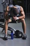 与完善身体摆在的肌肉男性模型 库存照片