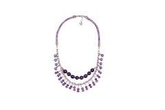 与宝石的紫色蛇皮革项链 库存照片