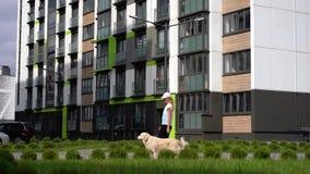 与宠物在一个现代城市-走与狗的年轻运动的妇女的生活 影视素材
