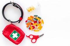与宠物的修饰集合治疗工具和医学在白色背景顶视图大模型 免版税库存照片