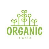 与宣传健康生活方式和Eco产品的几何植物的素食主义者自然食物绿色商标设计模板 向量例证