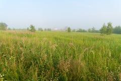 与家和有雾的草甸的美好的自然风景 库存照片