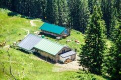 与家畜的农舍 免版税库存照片