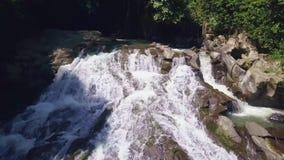 与寄生虫的空中射击在印度尼西亚的巴厘岛亚洲飞行的在密林中间的美丽的瀑布 股票视频