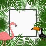 与密林棕榈树的热带卡片、海报或者横幅模板离开,桃红色火鸟和toucan鸟 异乎寻常的背景 向量 免版税库存照片