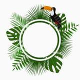 与密林棕榈树的热带被环绕的卡片、海报或者横幅模板离开和toucan鸟 异乎寻常的背景 向量 库存照片