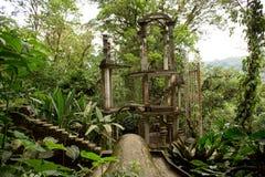 与密林围拢的台阶的混凝土结构 库存照片