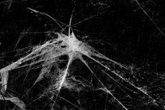与导致中间点连接的everyting的6条螺纹的蜘蛛网在黑白 免版税库存图片