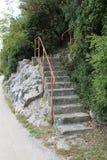 与导致森林的生锈的扶手栏杆的石步 库存图片