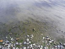 与小卵石和大海的岸 免版税库存图片