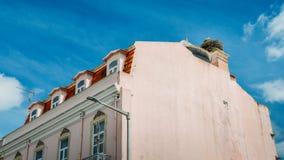 与小婴孩的白色鹳家庭巨型巢在一个屋顶顶部在阿尔加威,葡萄牙 免版税库存照片