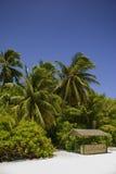 与小小屋的马尔代夫海滩 免版税图库摄影