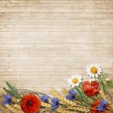 与小尖峰的野花在木背景 免版税图库摄影
