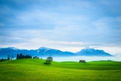 与小屋的绿色草甸小山风景 免版税库存照片