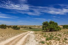 与小山和草甸的南澳大利亚风景有灌木和土路的反对蓝天与云彩面纱 免版税库存图片