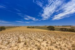 与小山和草甸的南澳大利亚风景有灌木和土路的反对蓝天与云彩面纱 库存图片