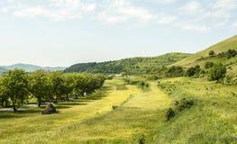 与小山的国家旁边风景 图库摄影