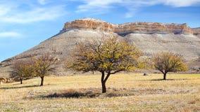 与小山的美丽如画的农村风景 图库摄影