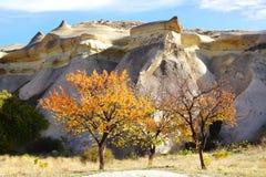 与小山的美丽如画的农村风景 免版税库存图片